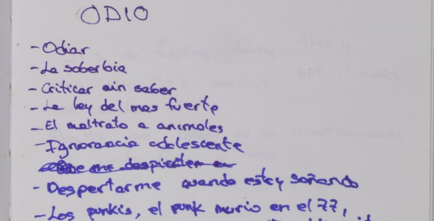 Proyecto Diario Xiana